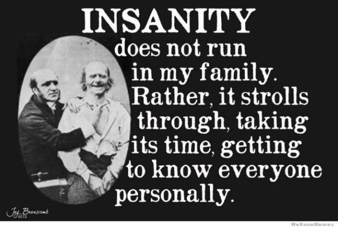 Family Meme Insanity does not run in my family rather