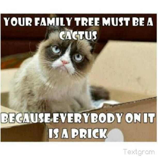 Family Meme Your family tree must be a cactus because