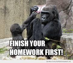 Finish your homework first Monkey Memes