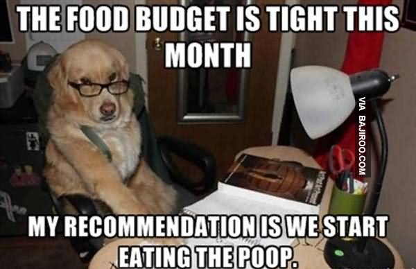 Food Meme the food budget is tight this month