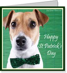 Funny Dog Wishes Happy St. Patrick's Day Greetings Card