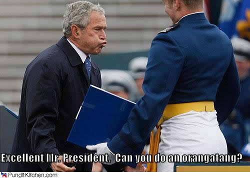 George Bush Meme excellent mr president can you do an oragatany