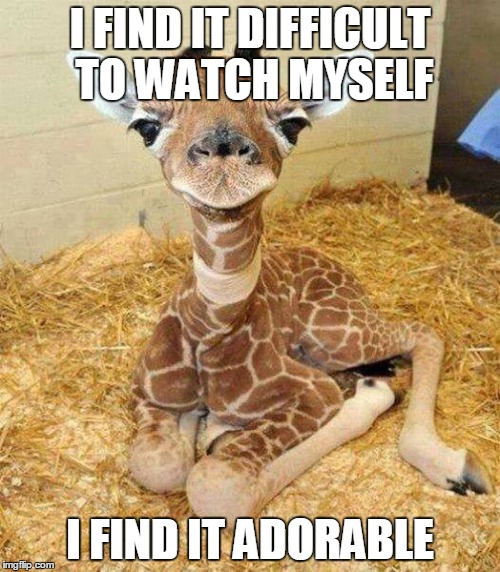 Giraffe Meme I find it difficult to watch myself