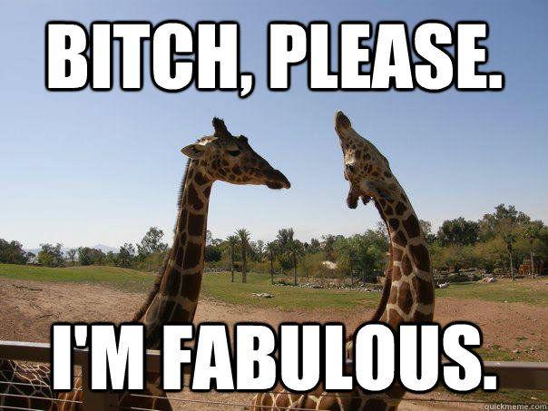 Giraffe Meme bitch please im fabulous