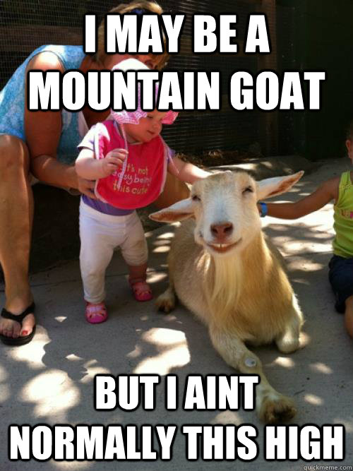 Goat Meme I may be a mountain goat but i aint normally this high