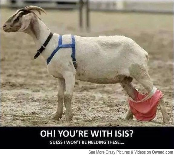 Goat Meme Oh you're with isis guess i won't be needing these