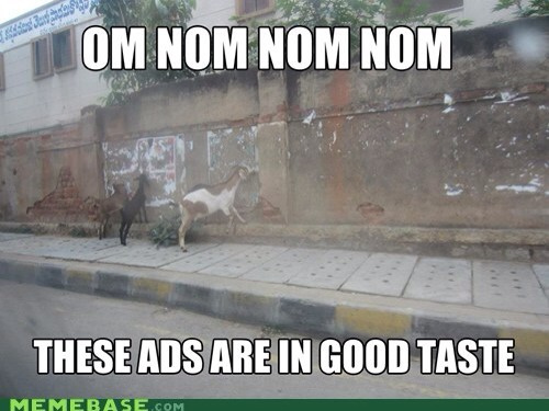 Goat Meme Om nom nom nom These ads are in good taste