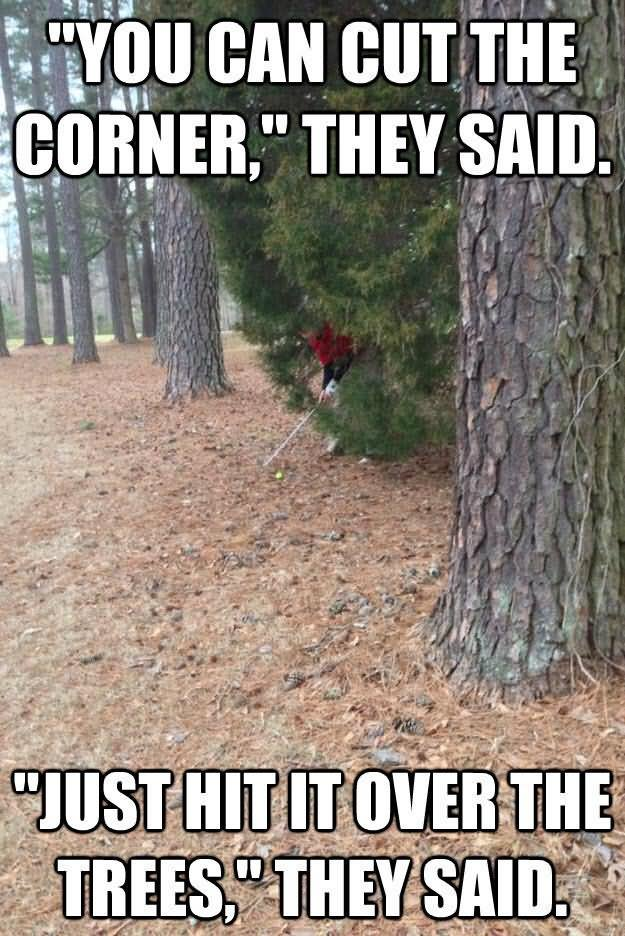 Golf Memes you can cut the corner they said