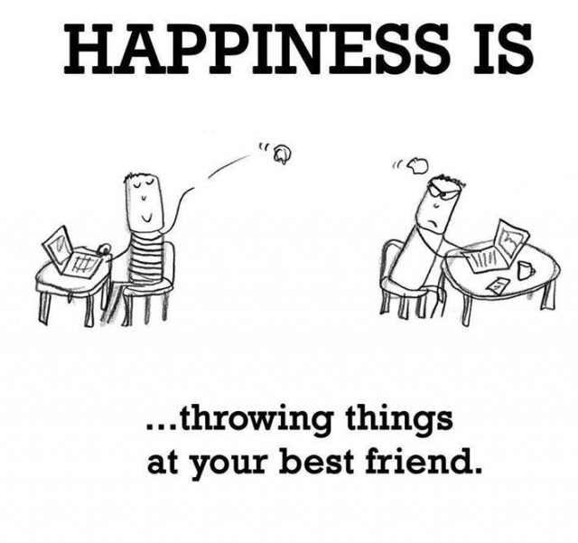 Happiness is throwing things at your best friends Insult Meme