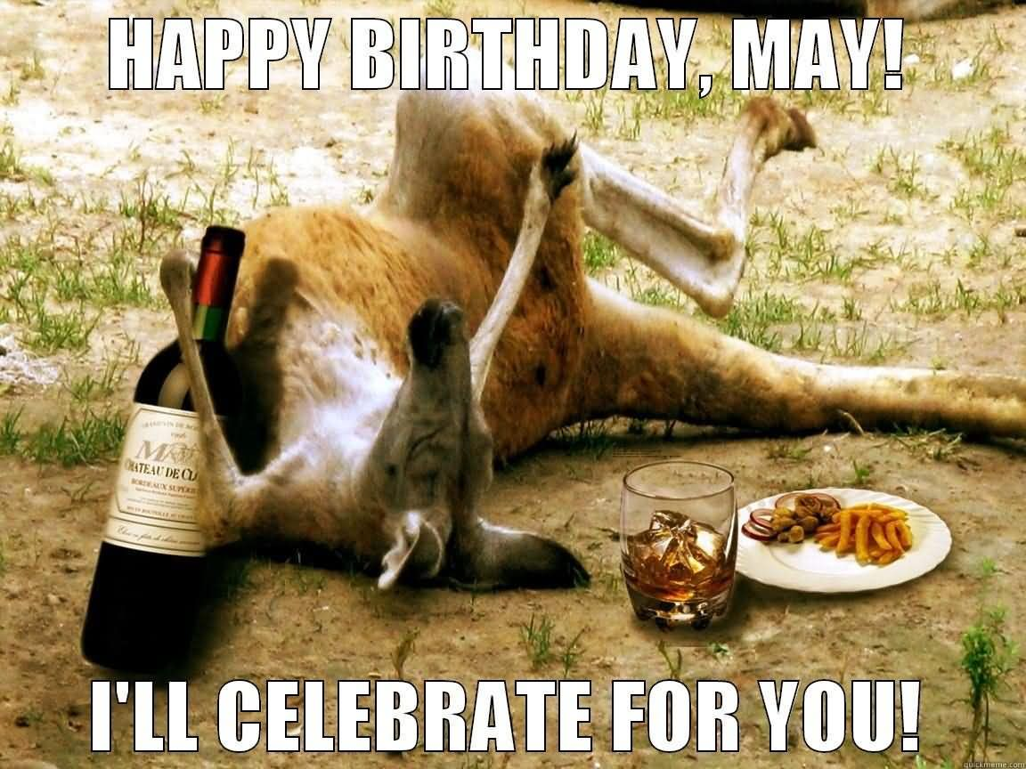 Happy birthday may i'll celebrate Kangaroo Memes