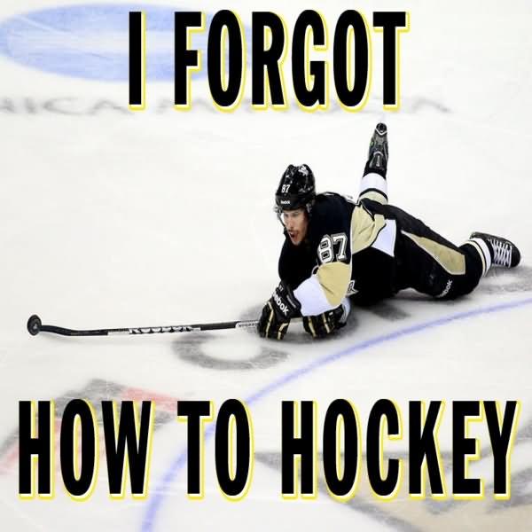 Hockey Memes I forgot how to hockey