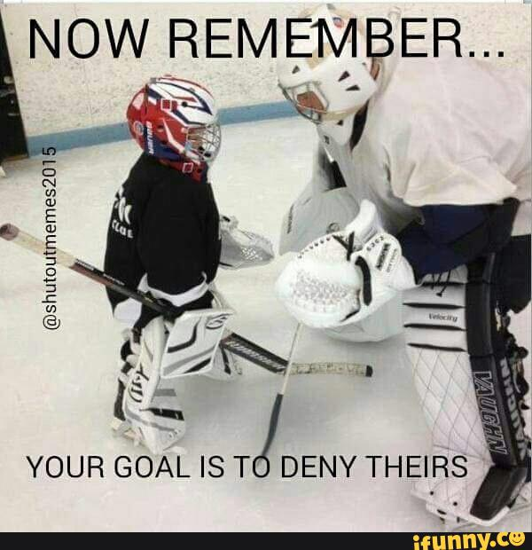Hockey Memes now remember your goal