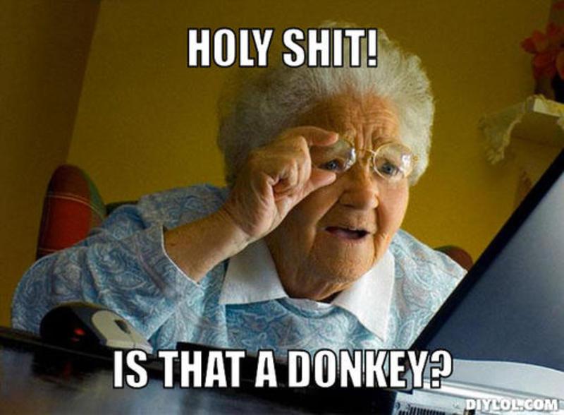 Holy shit is that a donkey Donkey Meme