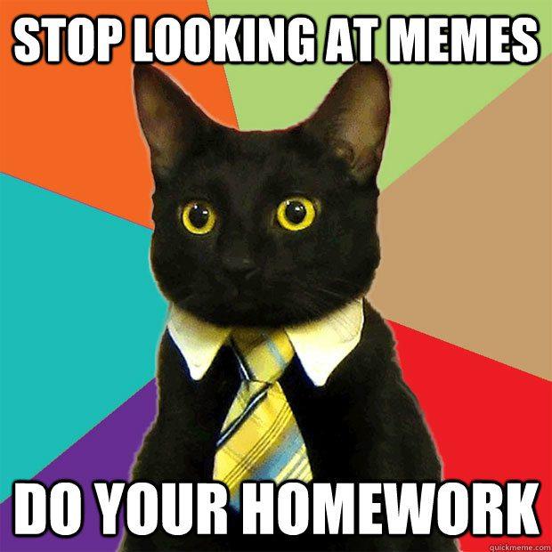 Homework Meme Stop looking at memes do you homework