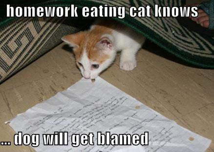 Homework eating eat knows dog will Homework Meme