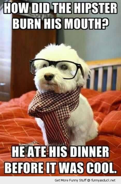 How did the hipster burn his mouth he ate his dinner Cool Memes