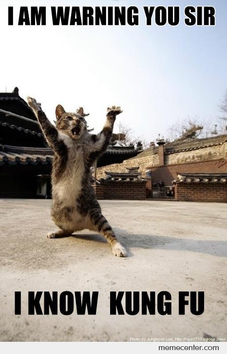I am warning you sir i know kung fu Goat Meme