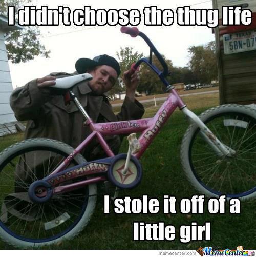 I didn't choose the thug life Bike Meme