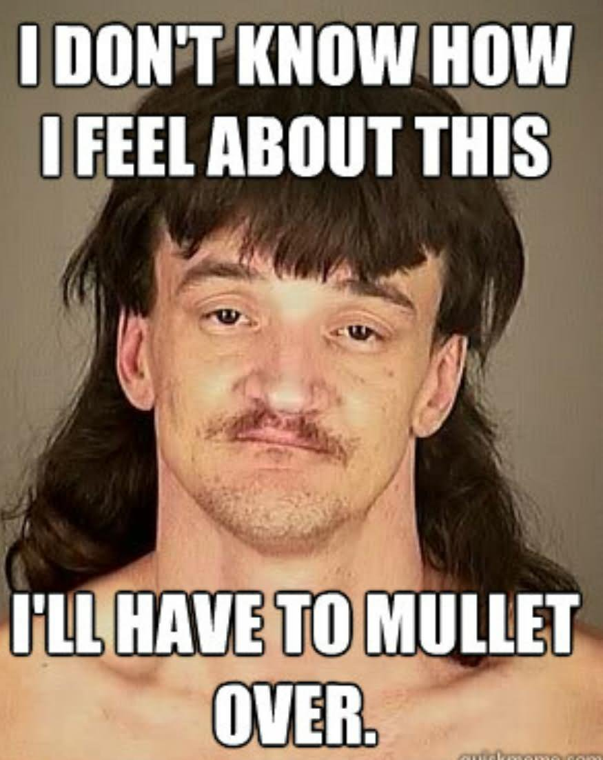 I dont know how i feel about this ill have to mullet Mullet Memes i don't know how i feel about this i'll have to mullet mullet memes