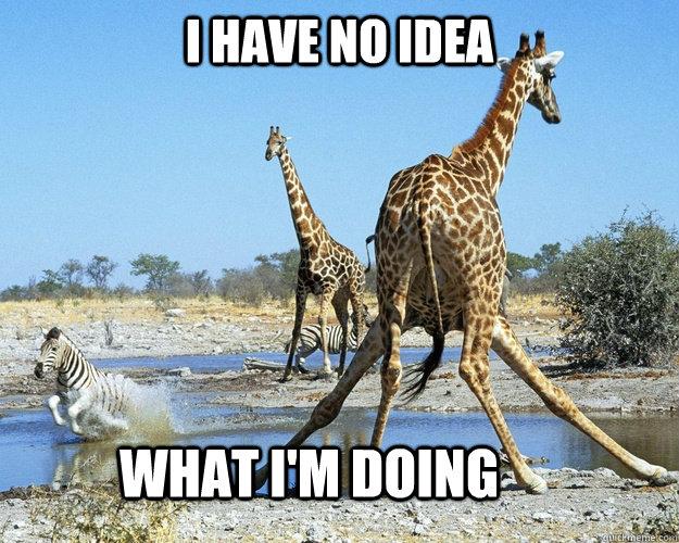 I have no idea what im doing Giraffe Meme