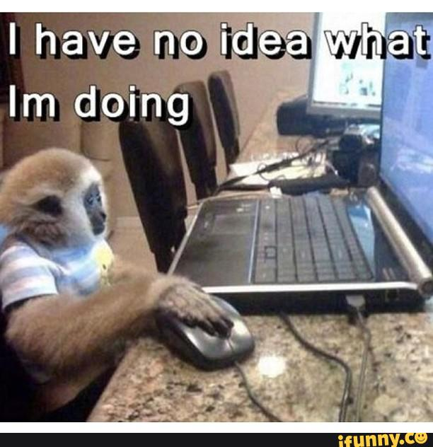 I have no idea what I'm doing Monkey Memes