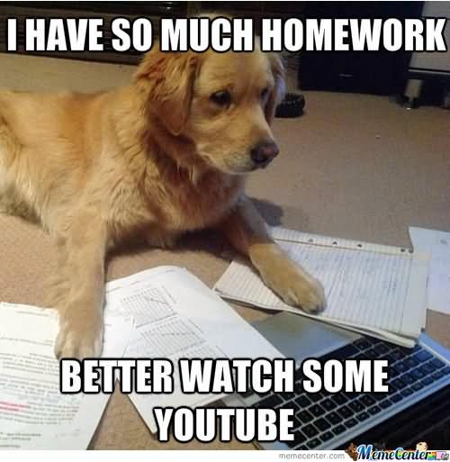 I have so much homework better watch some YouTube Homework Meme