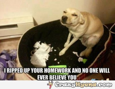 I ripped up your homework and no one will Homework Meme