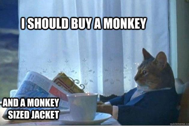 I should buy a monay and a monkey sized jacket Monkey Memes