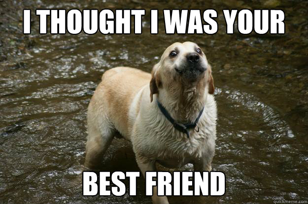 I thought i was your best friend Insult Meme