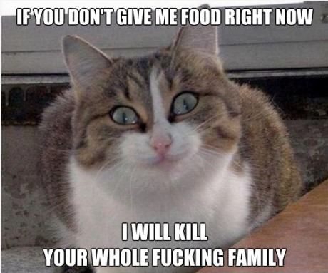 If you don't' give me food right now i will Family Meme
