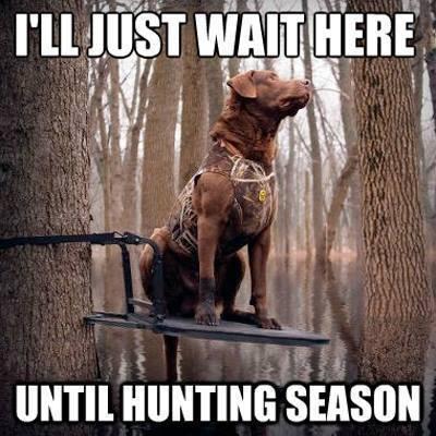I'll just wait here until hunting season Make Up Meme