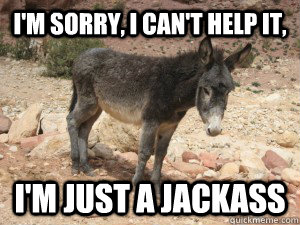 Im sorry i can't help it im just Donkey Meme