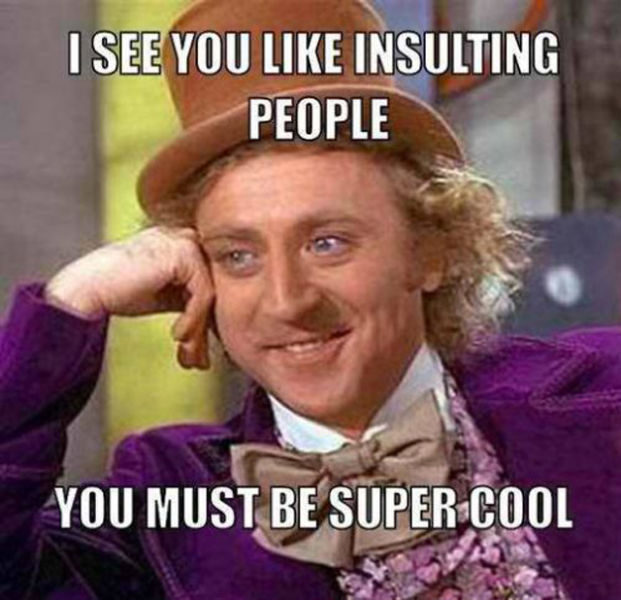 Insult Meme I see you like insulting people