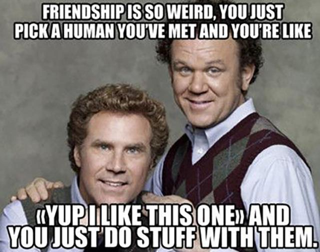 Insult Meme friendship is so weird you just pick a human you've
