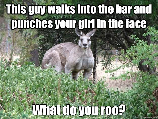 Kangaroo Meme This guy walks into the bar and punches