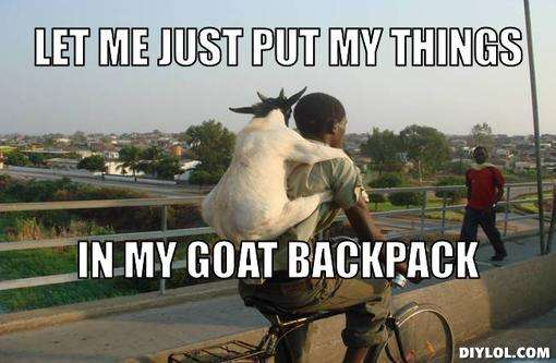Let me just put my things in my goat backpack Goat Meme