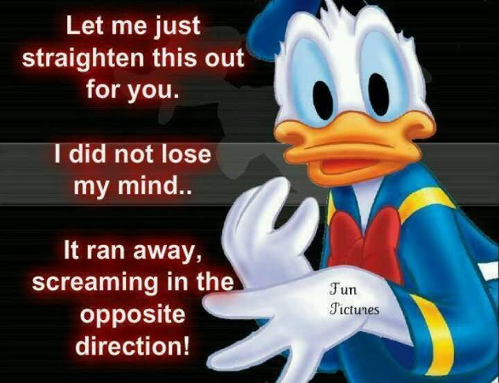 Let me just straighten this out for you i did Duck Memes