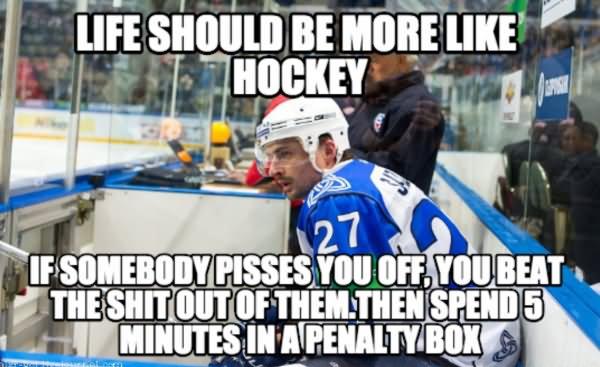 Life should be more like hockey if somebody Hockey Memes