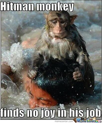 Monkey Memes Hitman monkey finds no joy
