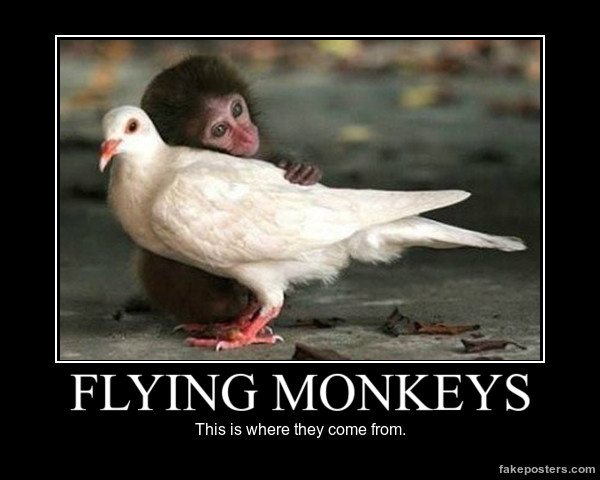 Monkey Memes Flying monkeys this is where they