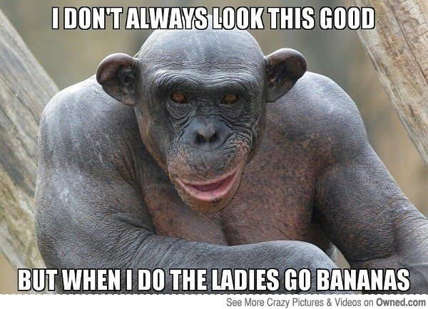 Monkey Meme I don't always look this good but when i do the ladies go bananas
