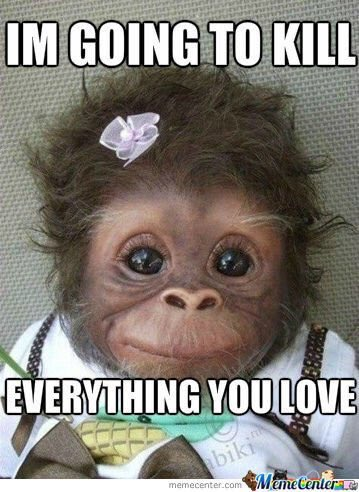 Monkey Memes I'm going to kill everything you love