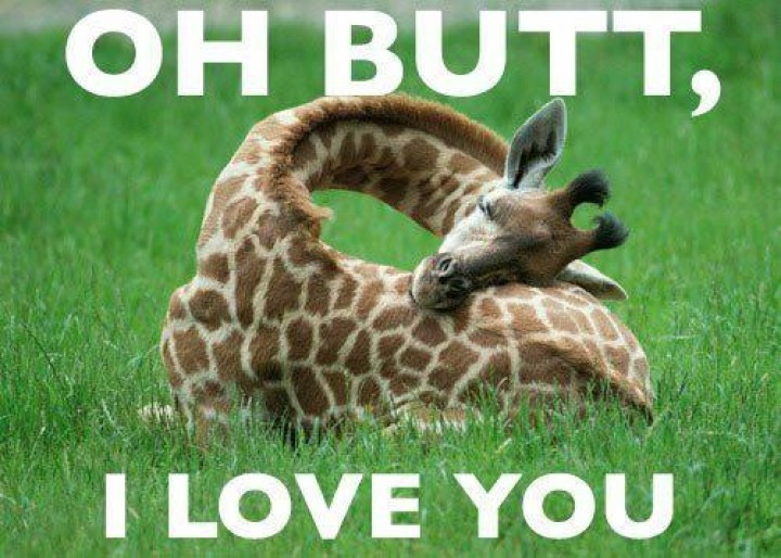 Oh butt i love you Cool Memes