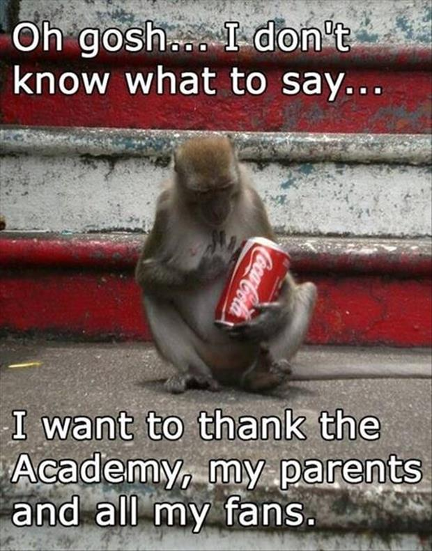 Oh gosh i don't know what to say i want to thank the academy my parents Monkey Memes