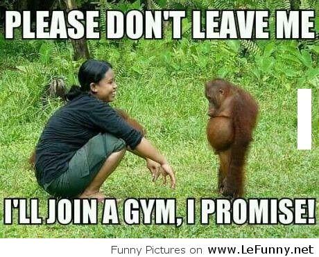 Please don't leave me i'll join Monkey Meme