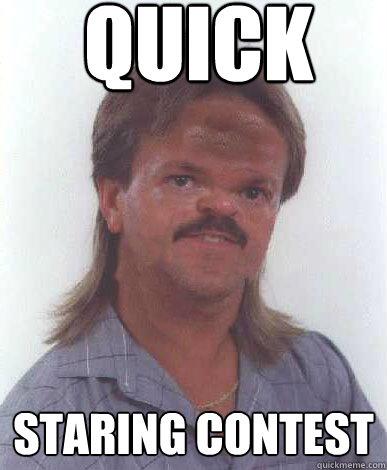 Quick staring contest Mullet Meme