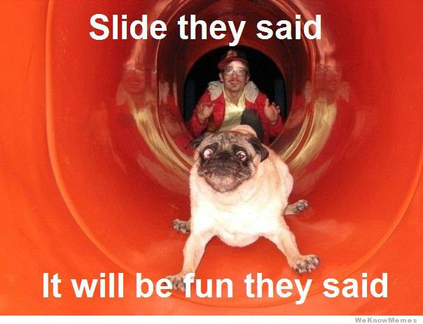 Slide they said it will be fun they said Dog Meme