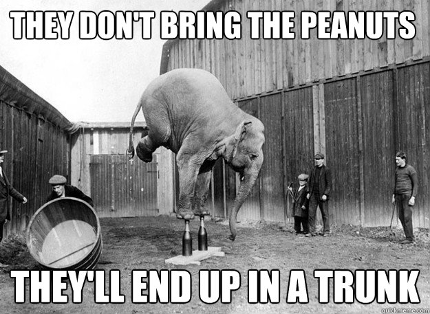 They don't bring the peanuts they'll end up in a trunk Elephant Meme