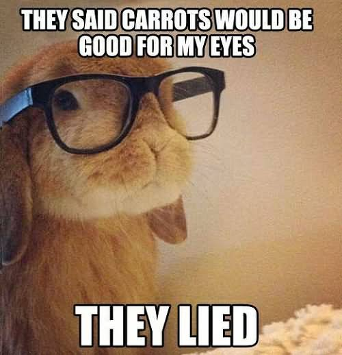 They said carrots would be good for my eyes Glasses Memes