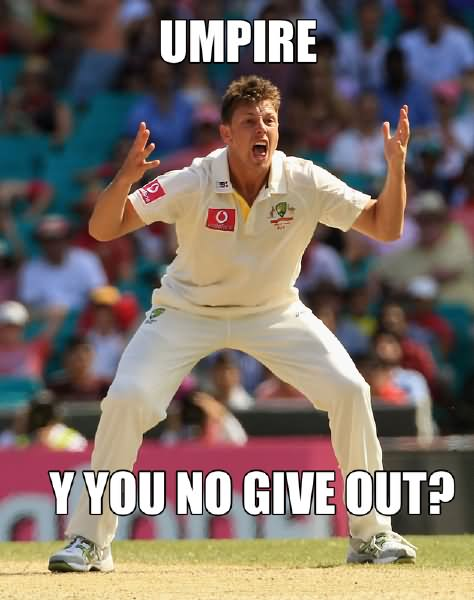 Umpire y you no give out Cricket Memes